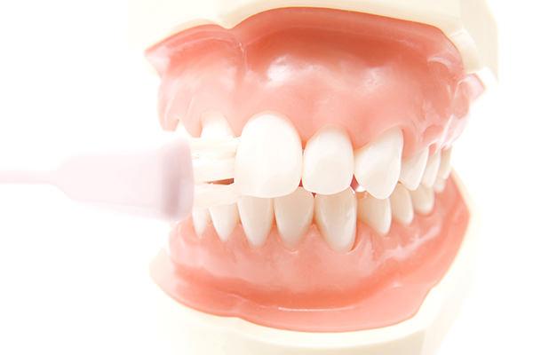 定期的に入れ歯をチェックして、調整していきましょう